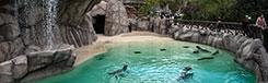 Een Zoo vol exotische dieren