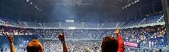 Muziek in het Sportpaleis en de Lotto Arena